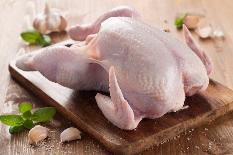 Pollo al ajillo