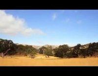 Trailer oficial de 'Blanco perfecto'